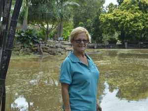 Dam long wait: Nursery finally gets rain relief