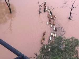 Major flood alert as relentless deluge monsters southwest