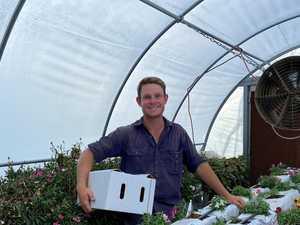 Edible flower business blooms for local entrepreneur