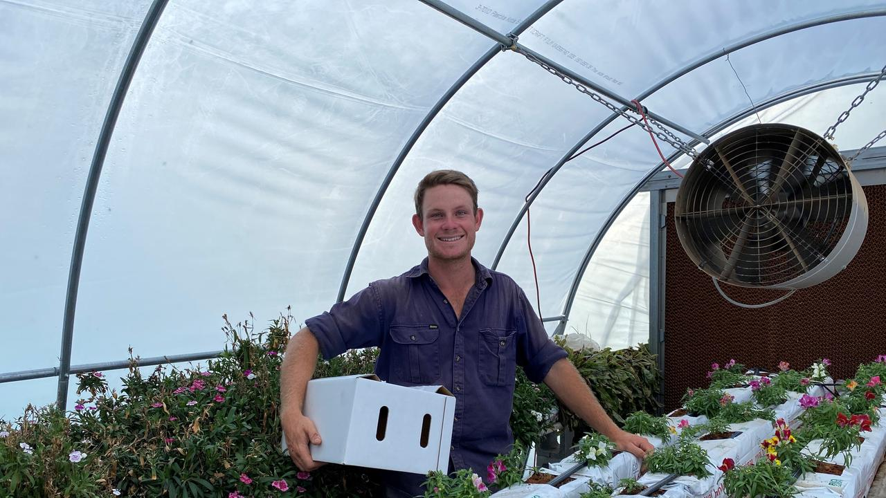 GROWING BUSINESS: Flare Speciality Produce owner Josh Paterson tends to his produce at his new property in Helidon.