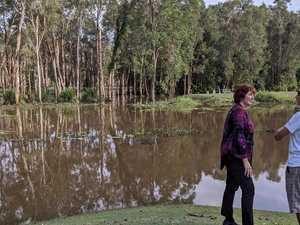 Millions of mozzies: Blocked drain creates lake