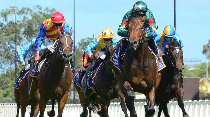 Top Qld hope to cheer on in Guineas