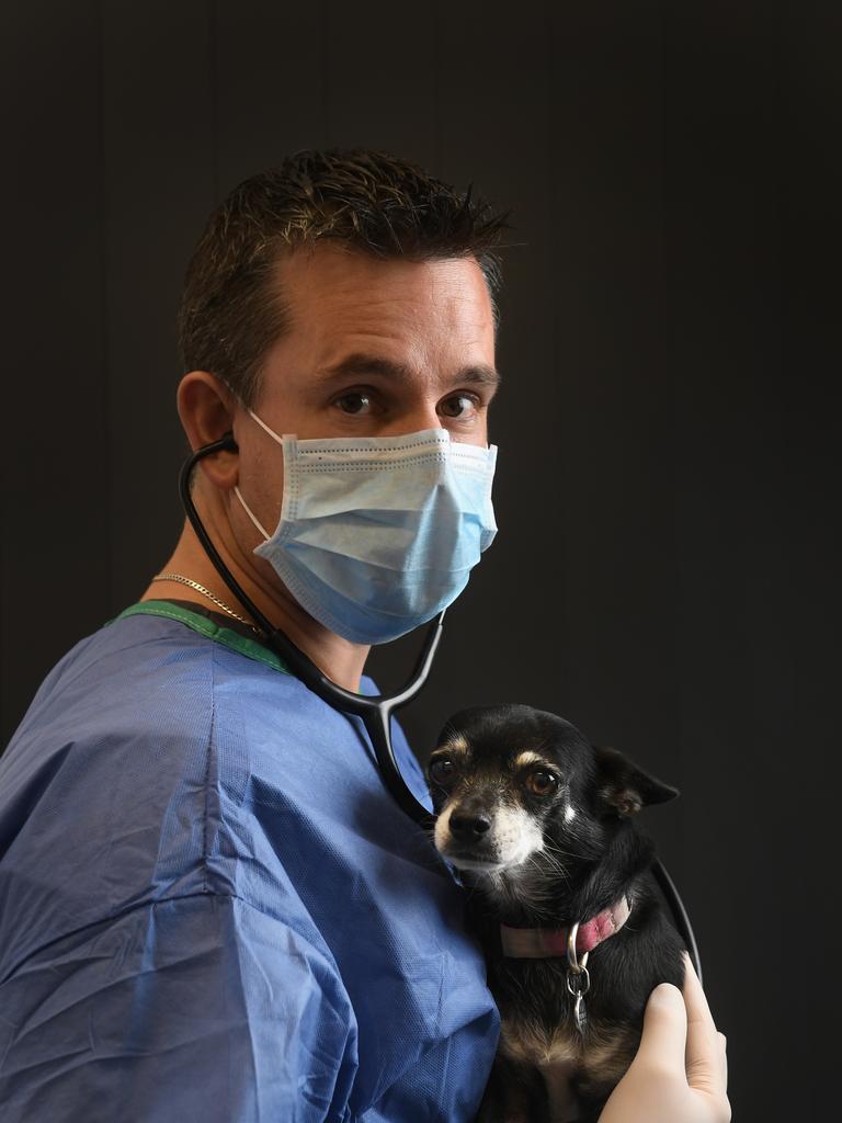 Dr Andrew Hemming from Ripley Veterinary Hospital.