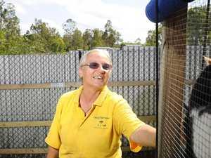 Happy paws founder hospitalised
