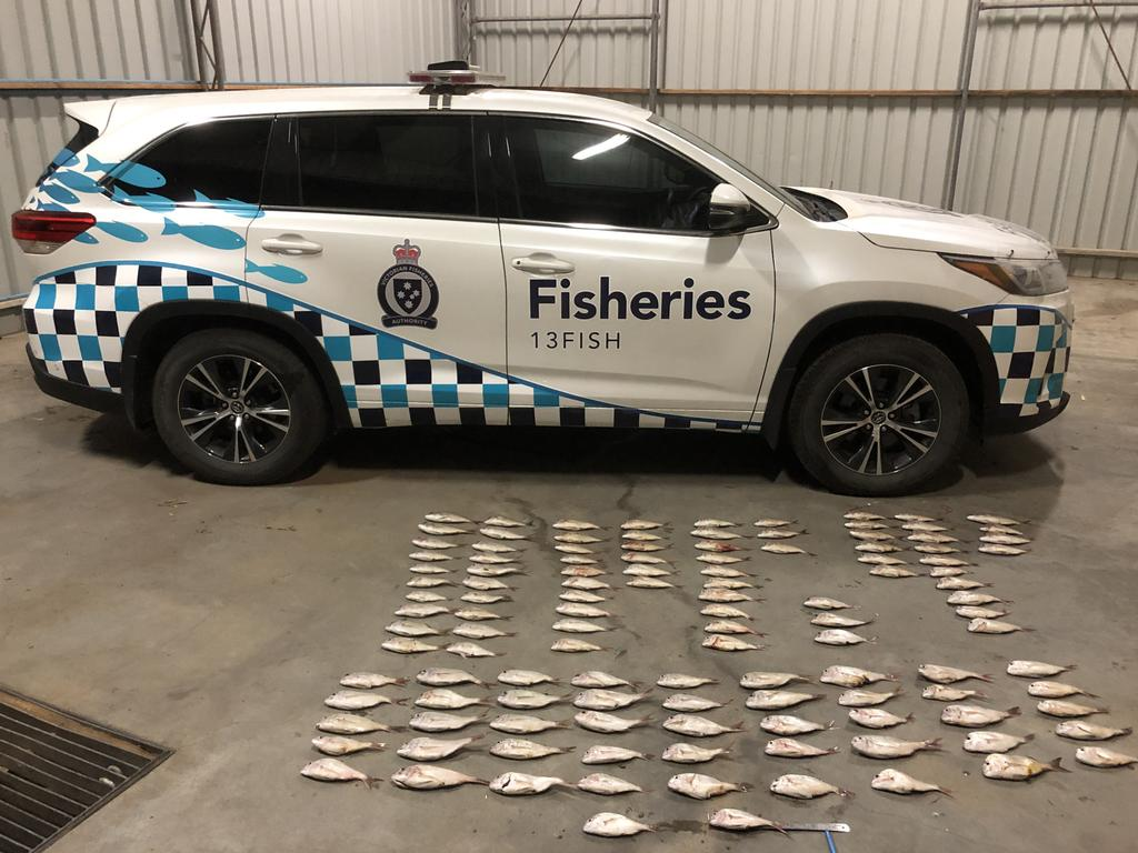 Two cars and illegal hauls of 119 undersized snapper were seized by Fisheries officers at Port Melbourne following the apprehension of four men. Photo: Supplied
