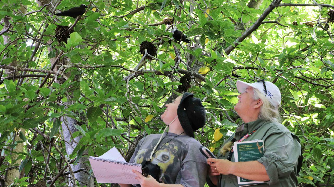 REEF RESCUE: Zerra Egerton and Kathy Townsend conducting a bird survey.