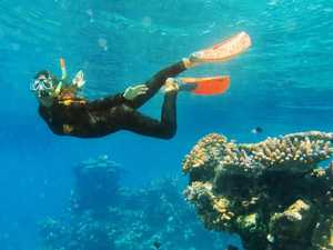 $5m for restoring reefs, providing wildlife safe havens