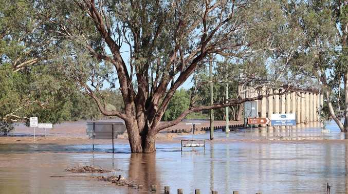 River hits peak as town prepares for mozzies
