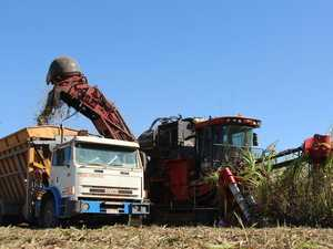 Prossie growers asked to dig deep to help soil health