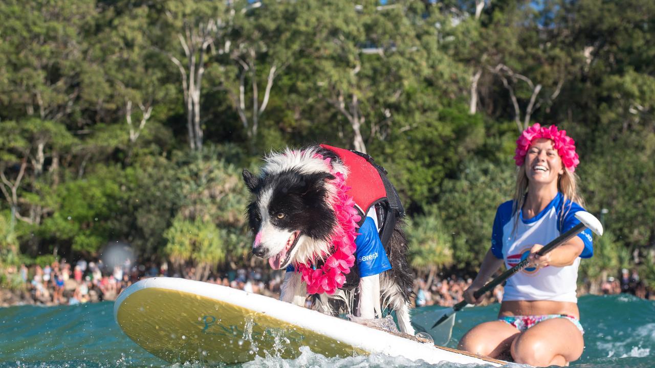 Sunshine Coast weekend events.