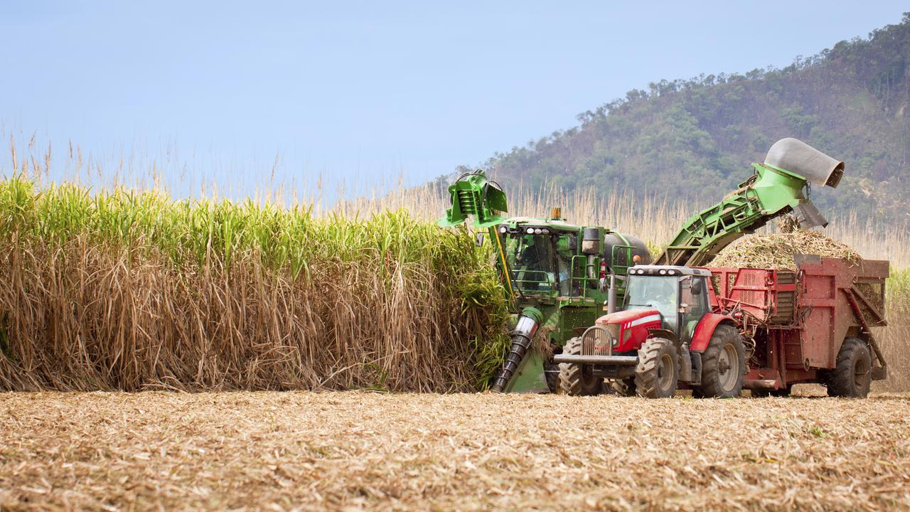 GROWTH POTENTIAL: Sugar cane harvest in tropical Queensland, Australia.