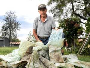 More than 300 plastic tree guards pulled from Bremer River