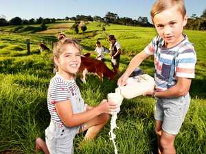 Fed govt wants better deal for dairy farms