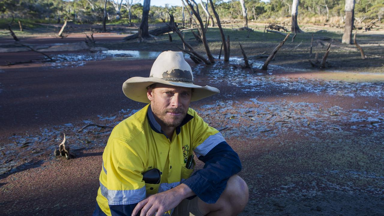 Tim Carnell, managing director of Kirra Pines at Ballandean: Picture: Natalie Grono