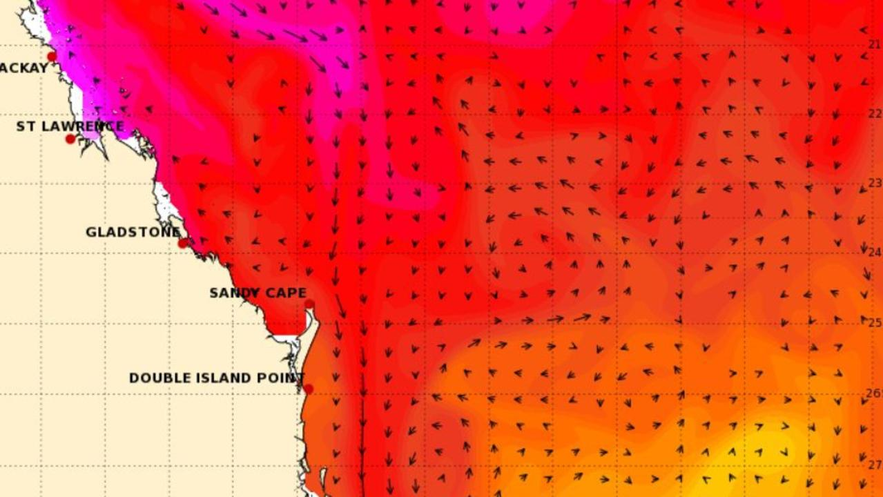 Ocean temperatures off the Queensland coast have soared with Sunshine Coast waters reaching 29C+ this week.