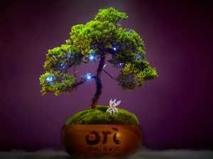 Ori and Will of the Wisps: Bonsai trees up for grabs