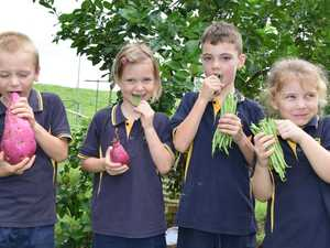 PHOTOS: Local school joins the big crunch across NSW