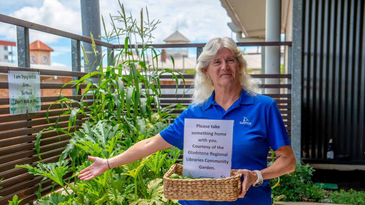 GREEN THUMBS REJOICE: Gladstone Regional Libraries manager Fran Moroney at the city library's new community garden. Garden enthusiasts can plant their own fruit and vegetables and take them home.