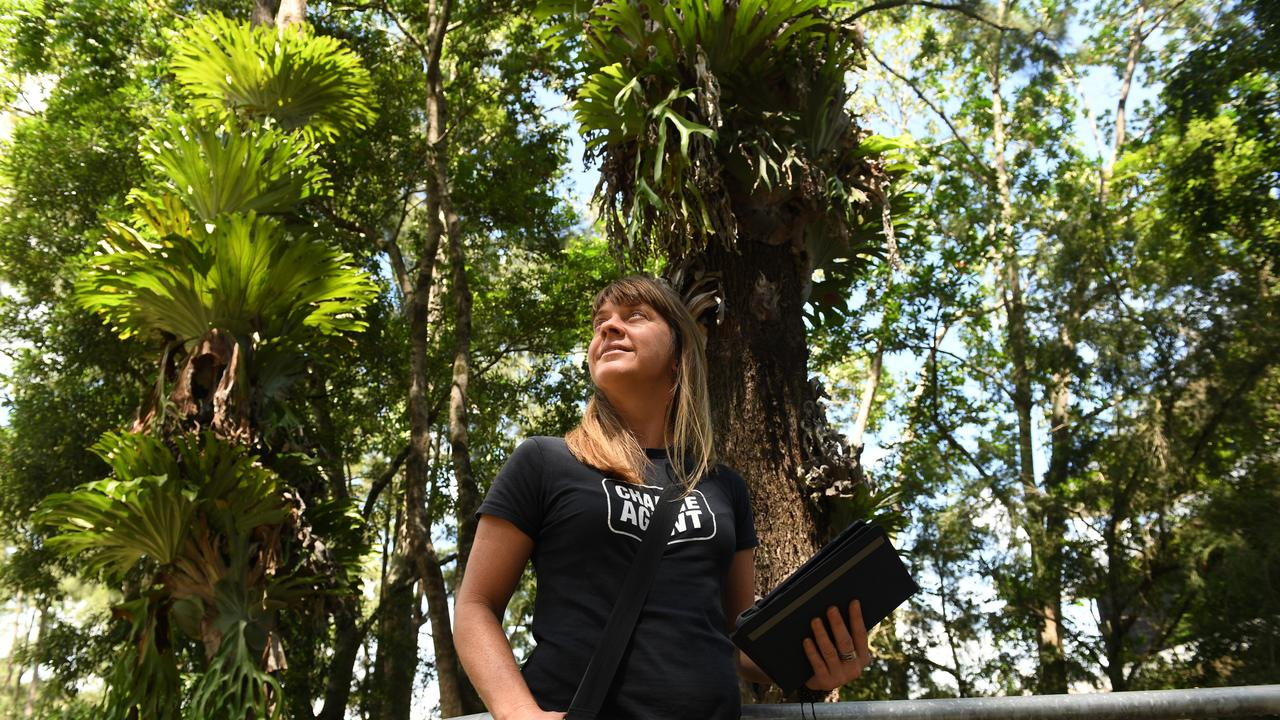 NEW BUSINESS: Michelle Chapman, of Seed Tree Maps, is helping land owners become more familiar with the native vegetation on their property. Photo: Marc Stapelberg