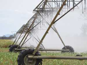 EXCLUSIVE: Lockyer irrigators given final water allocations