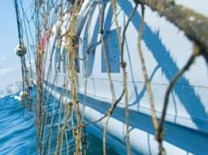 Shark nets removed in rough seas