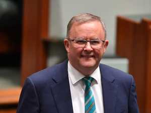 Albo off to Bluesfest in holiday as tourism has virus blues