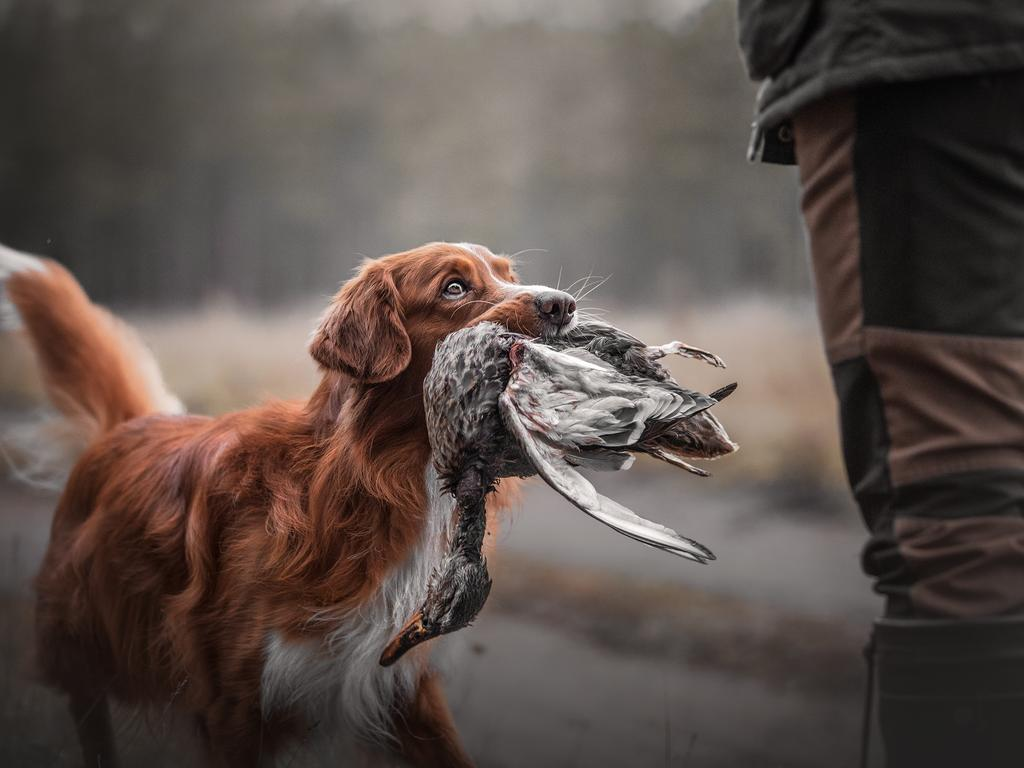 Kristiina Tammik's entry into the 2020 Sony World Photography Awards, which took home a place of Winner in the National Awards. Picture: Kristiina Tammik, Estonia/2020 Sony World Photography Awards