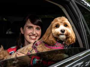 New Uber Pets trial begins – but comes at an extra price