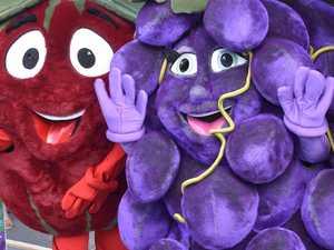 'Best festival yet': Apple & Grape defies the odds