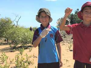 Reef Guardian students comb beachfront for rubbish