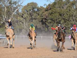 Campdraft cancellation brings silver lining