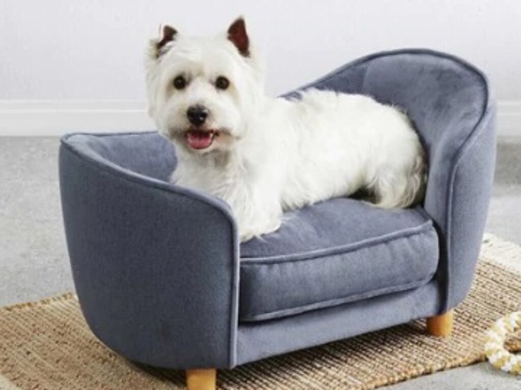 Figures from the RSPCA show 60 per cent of pet owners have adopted 'pet parenting' behaviours. (Shown, Aldi's small pet sofa, $49.99.) Picture: Supplied/Aldi