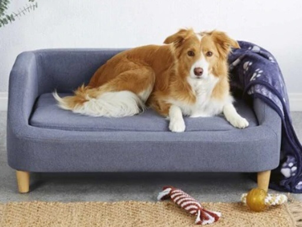 This stylish pet bed, designed for a larger animal, is priced at $99.99. Picture: Supplied/Aldi