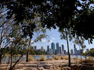 Body found near popular Brisbane jogging route