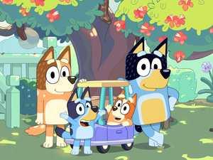 TV wonder dog Bluey helps kids learn hand hygiene