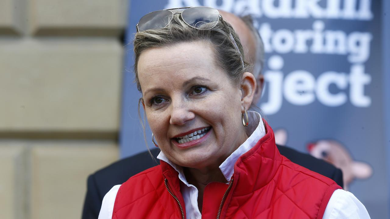 Federal Environment Minister Sussan Ley. Picture: Matt Thompson