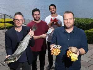 Top chefs share fears over impact of coronavirus