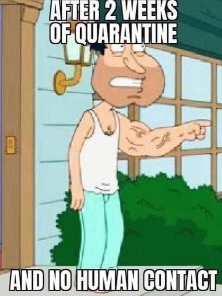 Coronavirus memes 2020