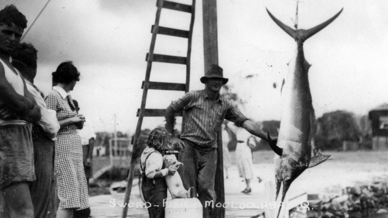 A swordfish at Mooloolaba Wharf, early 1930s. The fish were named on account of their short but powerful sword. During the 1930s, sightings and catches of large swordfish weighing between 300-1000lbs were reported at Mooloolaba.