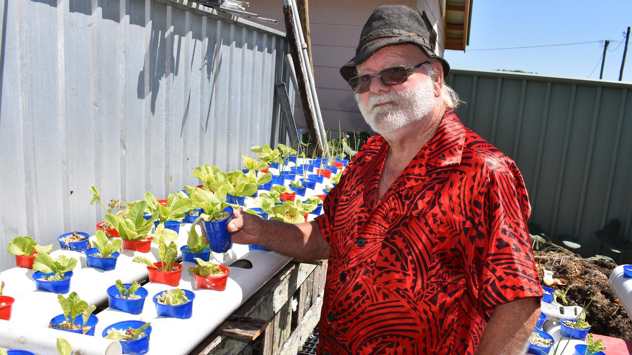 Jerry Cresswell's garden in Dyraaba St has plenty of vegies and he is using hydroponics to grow seedlings. PIC: SUSANNA FREYMARK