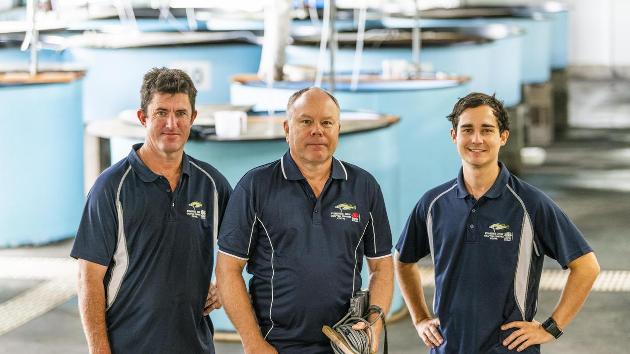 NSW DPI Grafton Fisheries Centre staff from left, Fisheries Technician John St Vincent Welch, Snr Research Scientist Gavin Butler and Snr Fisheries Technician Mitch Turner.