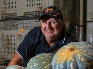 Growers reveal when vegetable prices will drop