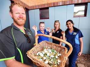 Fraser Coast plumber becomes sanitiser superhero