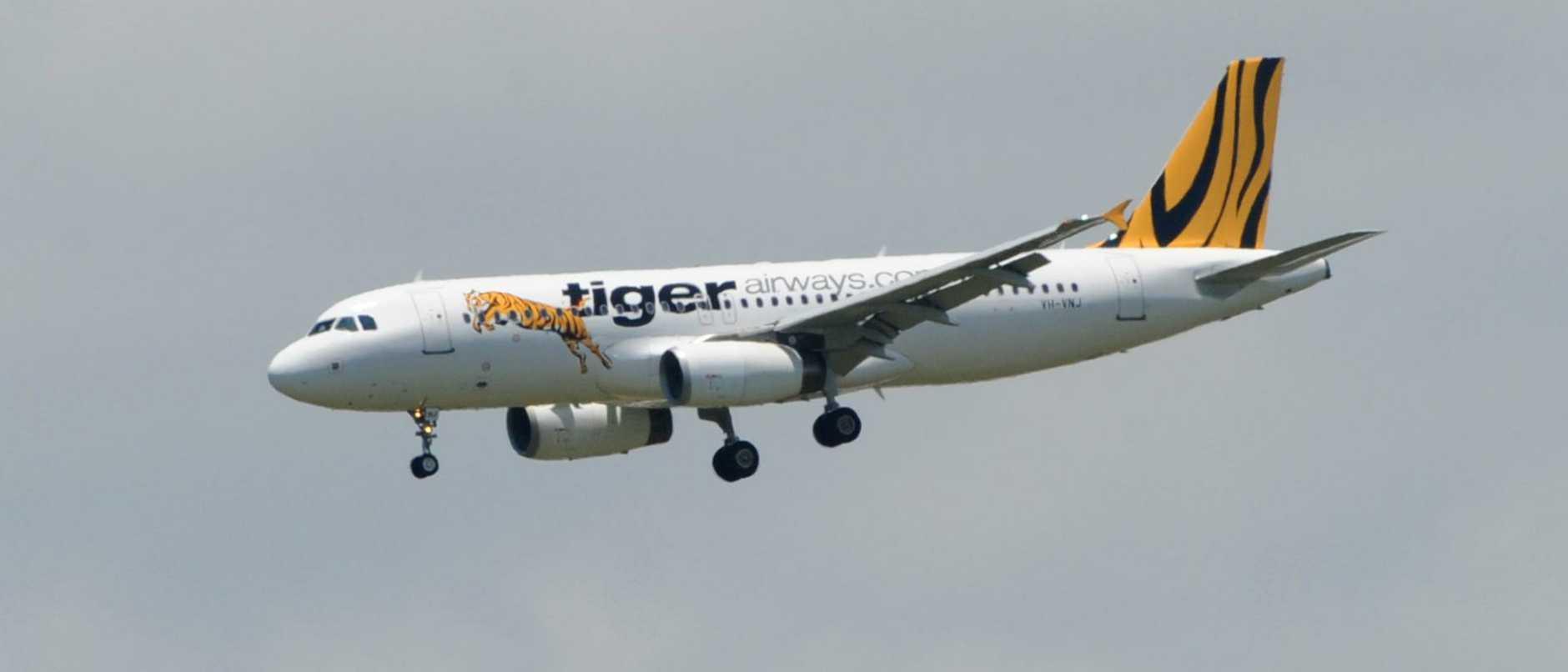 Tiger TGW585