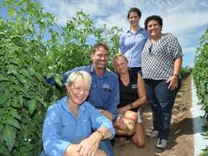 Local produce market to go ahead