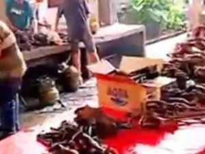 GRAPHIC: China's wet markets should be banned