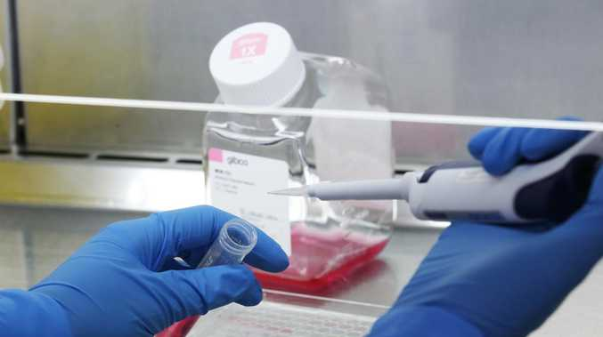 Sunshine Coast's coronavirus cases continue to rise