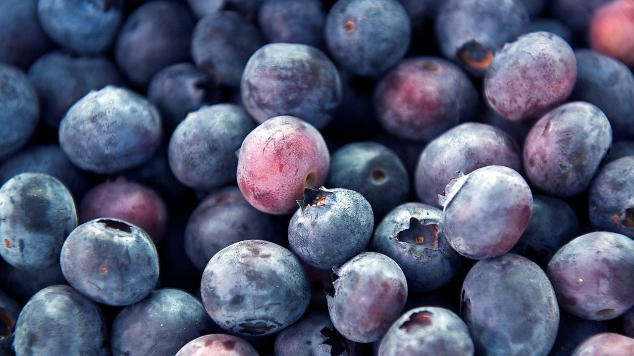 Image result for blueberries