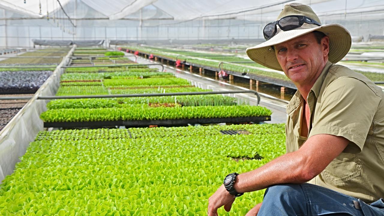 Spring Creek Seedlings company director Peter Burnell.