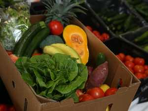 Food supply to ease as markets expect new deliveries